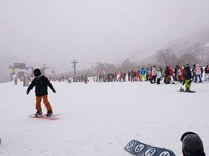 201212かぐらスキー003.jpg