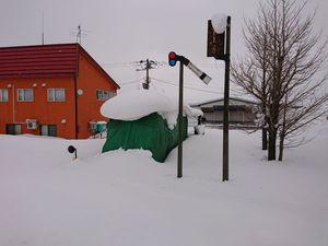 210116北海道ニセコスキー019.jpg
