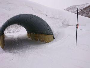 210116北海道ニセコスキー121.jpg