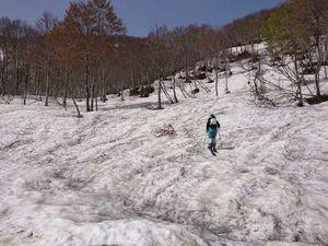 210504鍋倉山BCスキー007.jpg