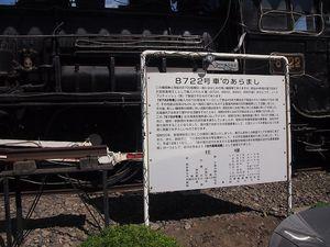 P7232811.jpg