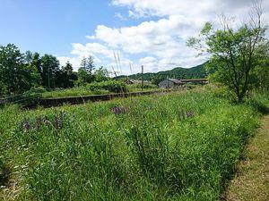 200620北海道炭鉱ツーリング0335.jpg